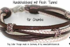 Hundehalsband-mit-Flesh-Tunnel-Chumba