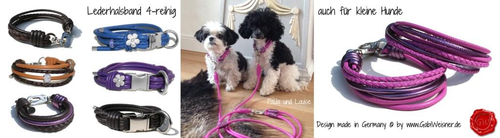 Lederhalsband-4-reihig-auch-für-kleine-Hunde