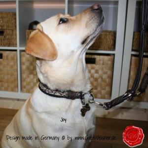 Hundehalsband-Lederhalsband-Joy-2