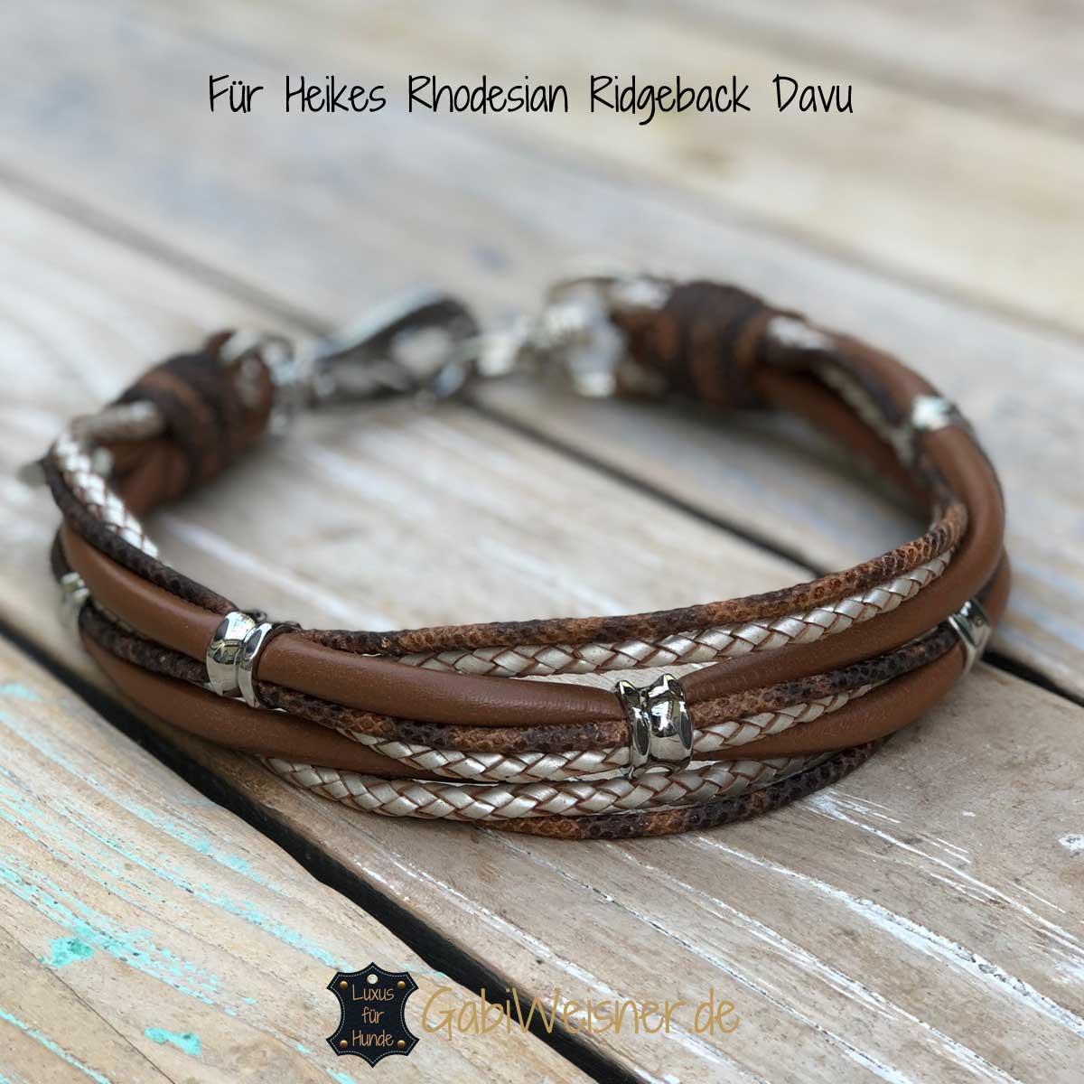 Für Heikes Rhodesian Ridgeback Davu