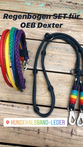 Regenbogen Halsband und Leine für große Hunde